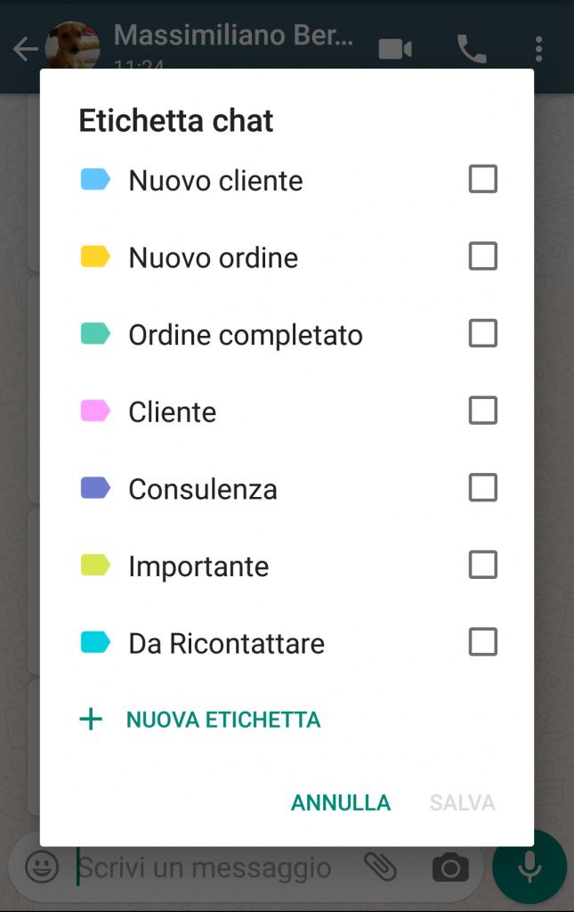 whatsapp business agropoli